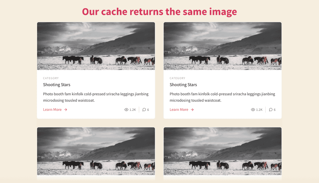 Showing four identical images on blog posts